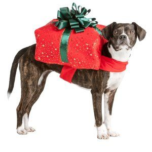 Present costume for Pet dog cat size small nwt